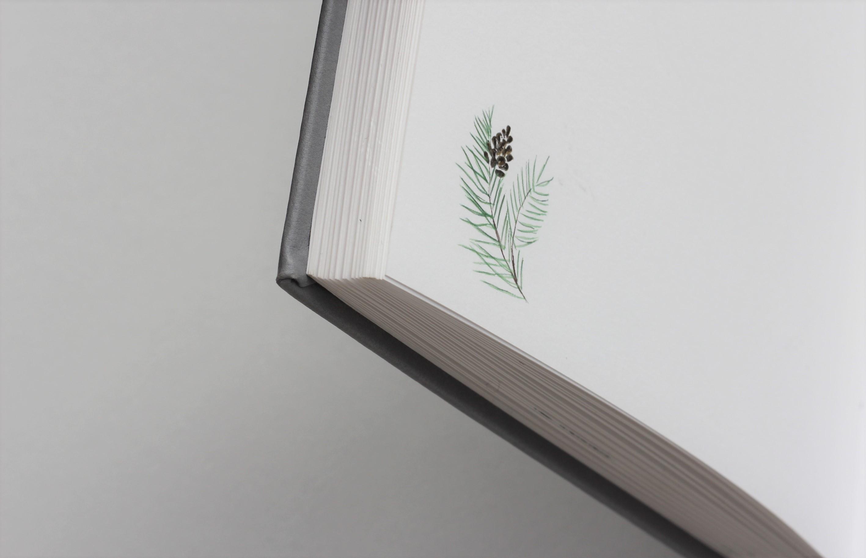 Hug a book svečių knyga
